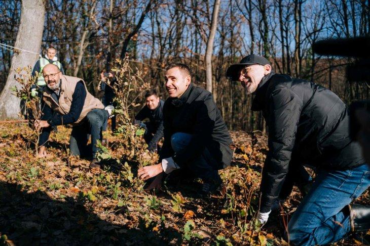 13.000 novih stabala hrasta