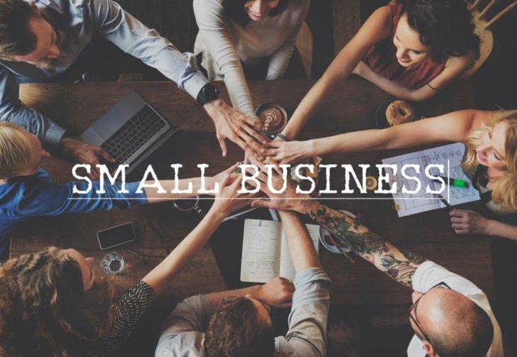 mala i mikro preduzeća