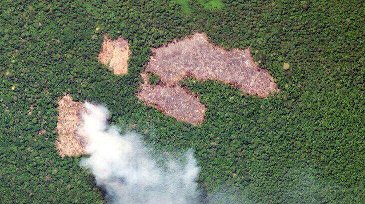 amazonija požari