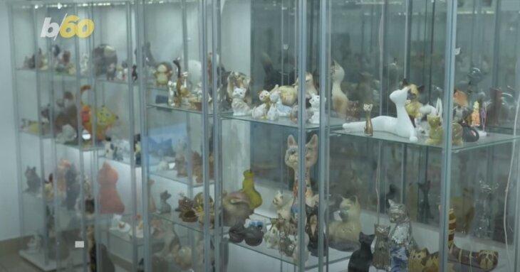 muzej mačaka