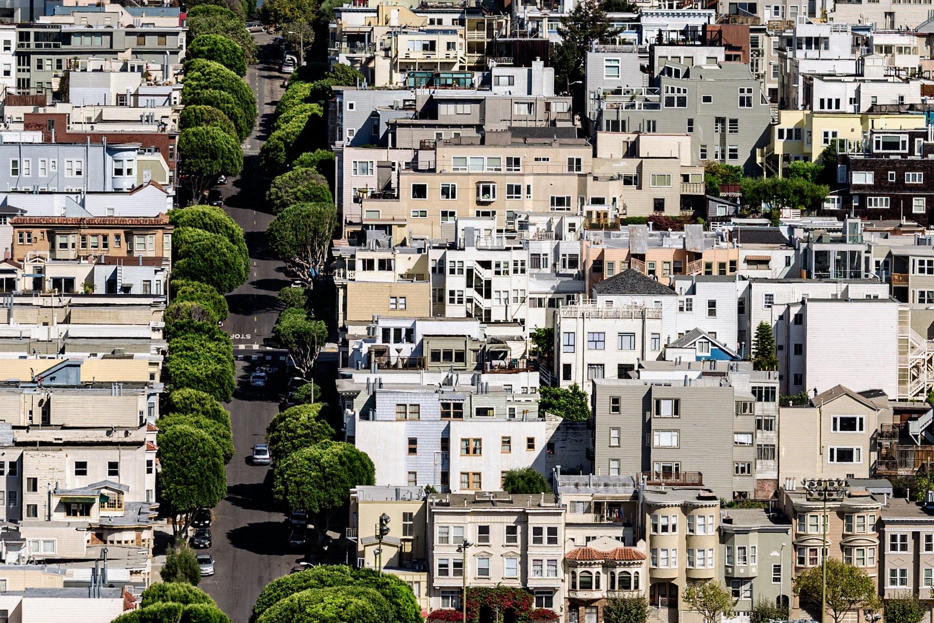 drveće u gradovima