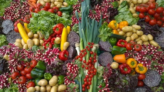 vegatarijanac nikola tesla
