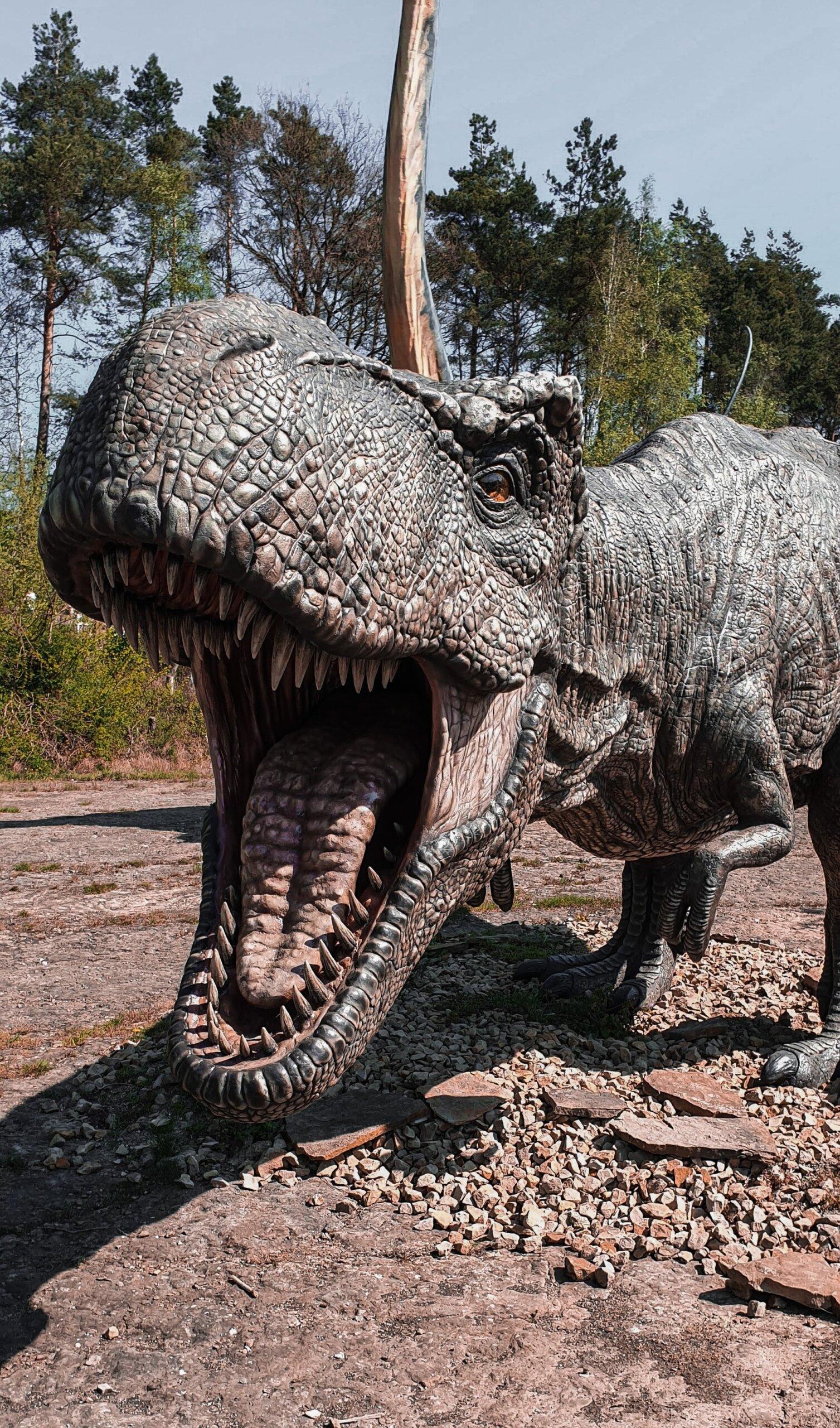 otisak dinosaurusa