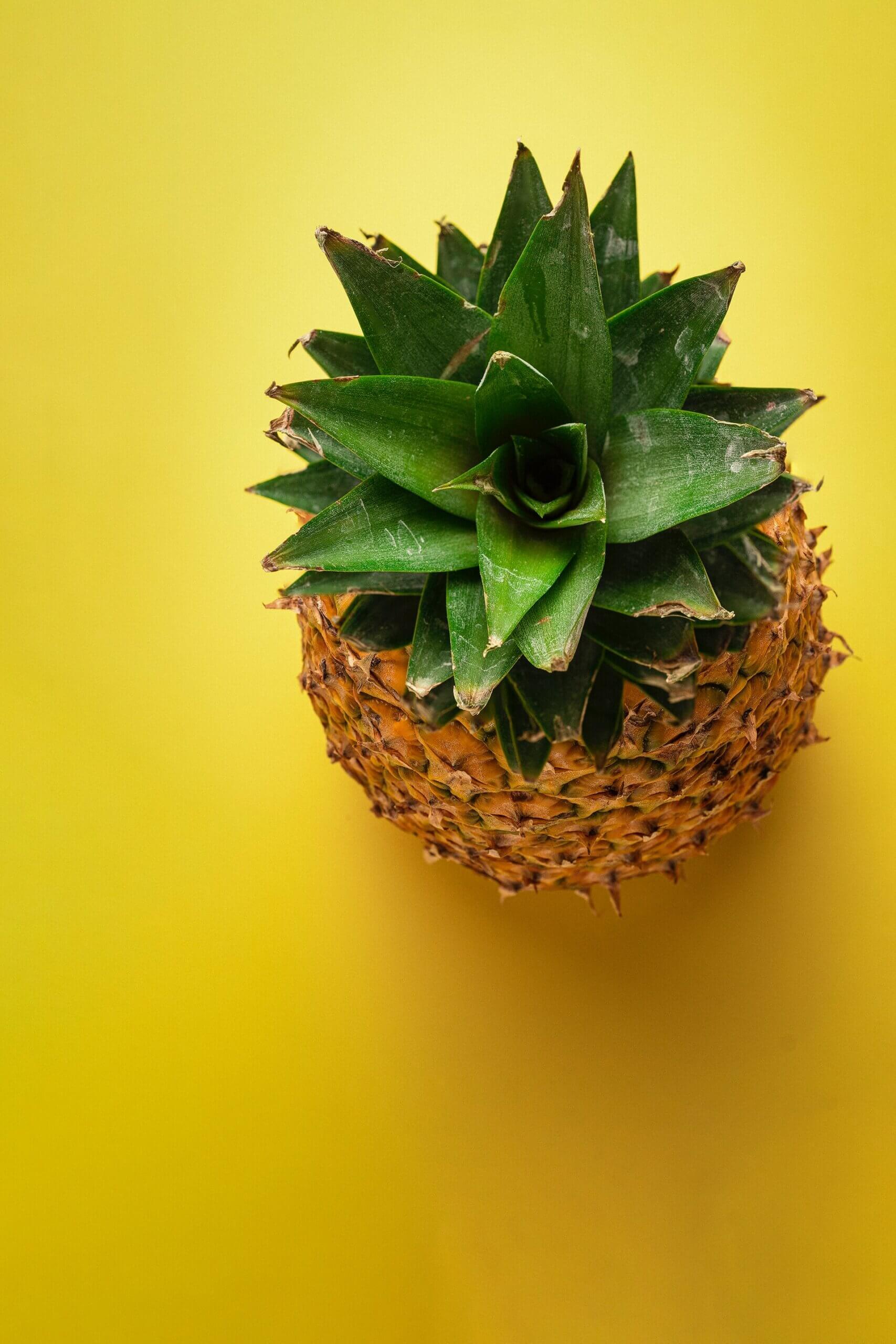 dronovi od ananasa